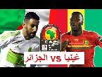 شاهد بثّ مباشر لمباراة الجزائر ضد غينيا