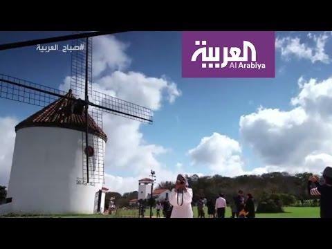 مصر اليوم - شاهد جزيرة غيغو الكورية إحدى عجائب الدنيا السبعة