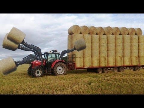مصر اليوم - شاهد  أضخم الألات الزراعية تعمل بطريقة مختلفة