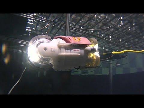 مصر اليوم - شاهد ابتكار روبوت السمكة الصغيرة لتقصي الحطام