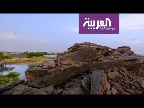 شاهد تاريخ وحقائق لنقوش أثرية منذ 8000 عام على الجزيرة العربية