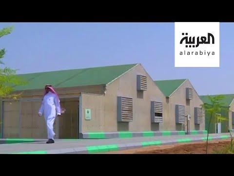 شاهد مشروع جديد للزراعة باستخدام مياه البحر في جدة