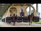 مصر اليوم - شاهد ابتكار آلة جديدة لتدريب الخيول على السباق
