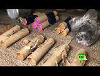 شاهد الأمن الروسي يحبط عملين إرهابيين في القرم ضد المؤسسات التعليمية