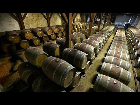 مصر اليوم - شاهد إنتاج النبيذ العالمي ينخفض بنسبة 3