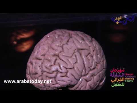 مصر اليوم - شاهد جولة مذهلة عبر الدماغ في مهرجان الشارقة