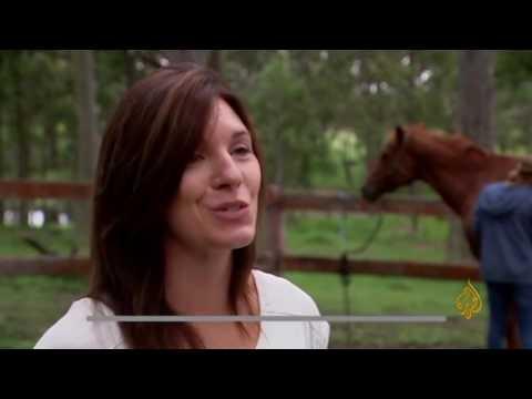 مصر اليوم - جمعية أسترالية توظف الخيول لإعادة تأهيل الأطفال المصدومين