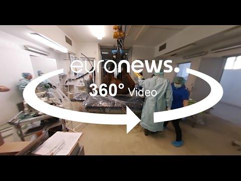 مصر اليوم - بالفيديو عيادة خاصة تقهر استحالة تخدير الأحصنة وإفاقتها في المجر