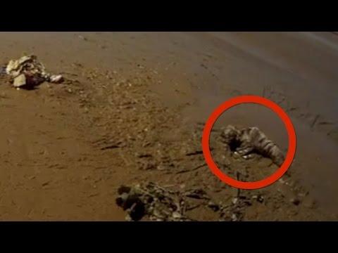 مصر اليوم - بالفيديو الوحل يبتلع ثمانينية وقوة إرادتها تنقذها بعد 20 ساعة