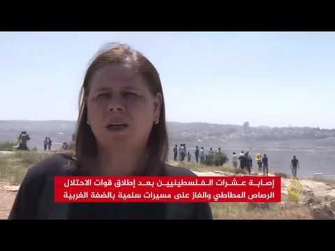 مصر اليوم - بالفيديو عشرات الإصابات بين المتضامنين مع الأسرى في الضفة الغربية