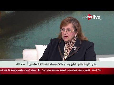 مصر اليوم - شاهد بسنت فهمي توضح أن قانون الاستثمار يحتاج لبعض التعديلات