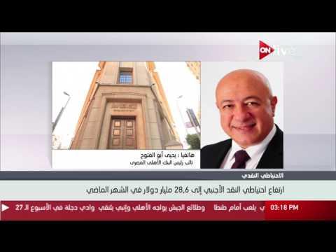 مصر اليوم - يحيى أبو الفتوح يؤكد ارتفاع احتياطي النقد الأجنبي