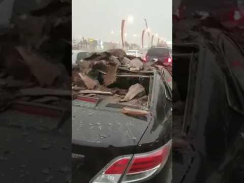 مصر اليوم - بالفيديو لحظة سقوط نخلة على سيارة في الرياض