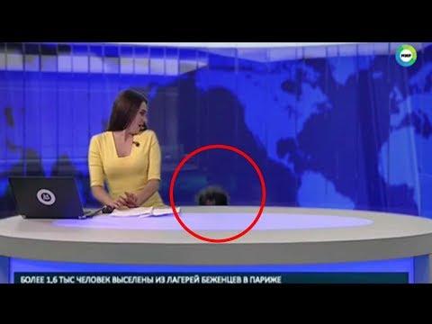 مصر اليوم - شاهد كلب يفاجئ مذيعة أثناء تقديمها لنشرة الأخبار