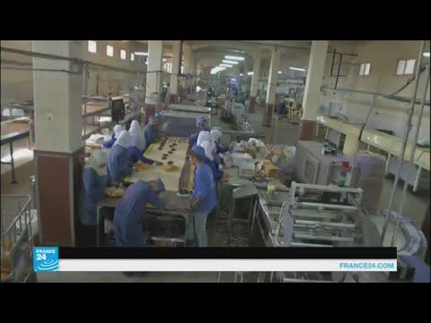 مصر اليوم - شاهد آثار كارثية على القطاع الصناعي في غزة