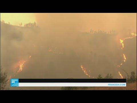مصر اليوم - شاهد الحرائق مستمرة في التهام غابات البرتغال