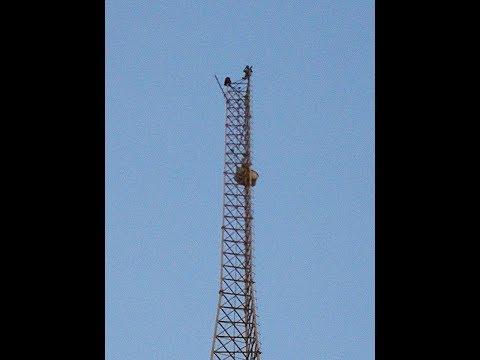 مصر اليوم - شاب يكشف أسباب محاولته القفز من أعلى برج اتصالات