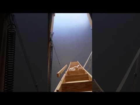 مصر اليوم - شاهد لقطات صادمة لعامل يعثر على غرفة سرية داخل منزل