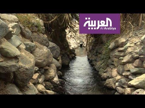 مصر اليوم - شاهد العيون تعود إلى مجاريها في المدينة المنورة