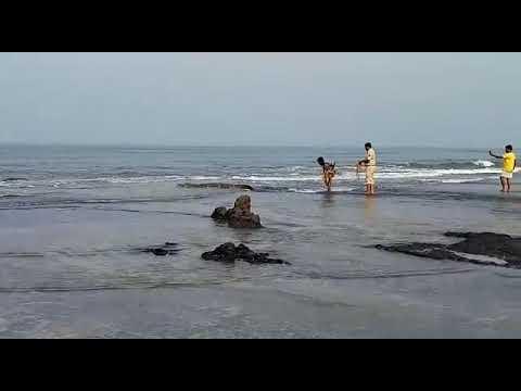 مصر اليوم - شاهد رجل مغامر يصارع تمساحًا ضخمًا بيديه