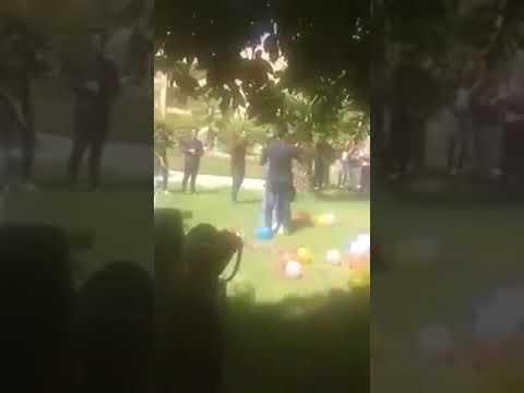 مصر اليوم - شاهد الفتاة التي أثارت الجدل بحضن حبيبها في جامعة طنطا تحتفل بخطوبتها