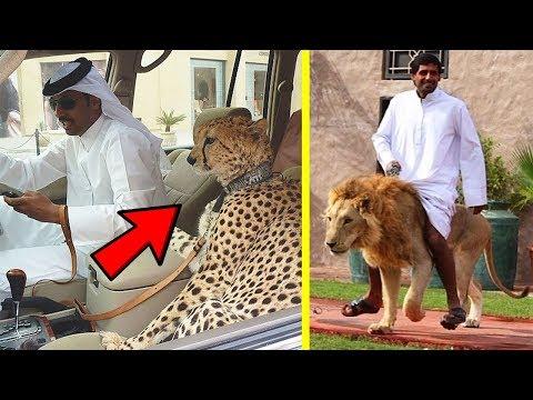 مصر اليوم - شاهد  10 أشياء مدهشة لن تراها إلا في دبي