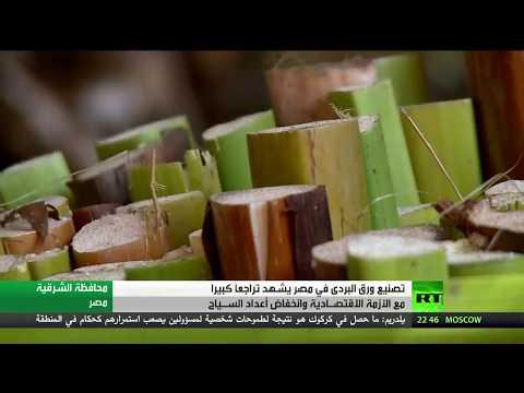 مصر اليوم - شاهد صناعة ورق البردي في خطر في مصر