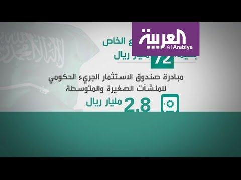 شاهد 72 مليار ريال لتحفيز القطاع الخاص في السعودية