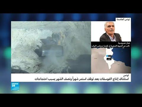 شاهد تونس تعلن استئناف نشاط شركة فوسفات قفصة بنسبة 90 بالمئة
