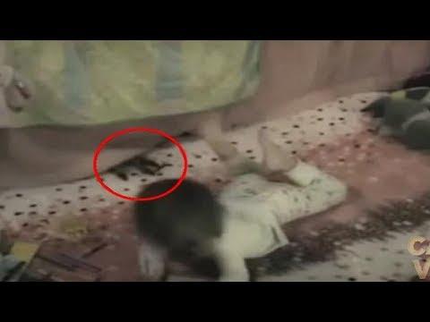 شاهد 5 هجمات شيطانية على الأطفال