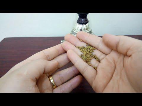 شاهد فوائد البذور لطرد السموم من الجسم