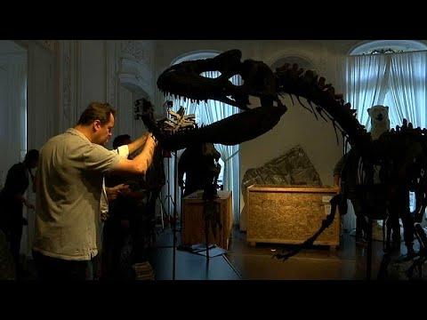 شاهد ديناصوران للبيع بمزاد علني في باريس الأسبوع المقبل