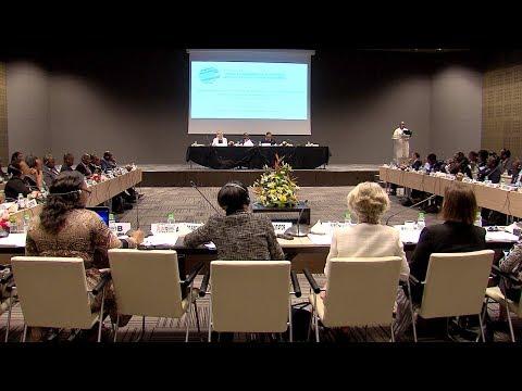 شاهد البلدان الأفريقية تجتمع في مراكش ضمن الاجتماع الإقليمي