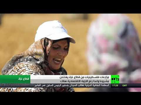 شاهد مبادرات أنثوية خلاقة في قطاع غزة