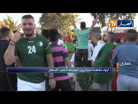 شاهد فرحة هستيرية لأنصار المنتخب الجزائري بهدف بلايلي