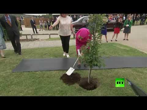 شاهد الملكة إليزبيث الثانية ترفض المساعدة وتغرس شجرة