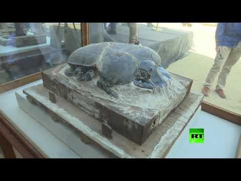 شاهد مصر تعلن اكتشاف حيوانات محنطة