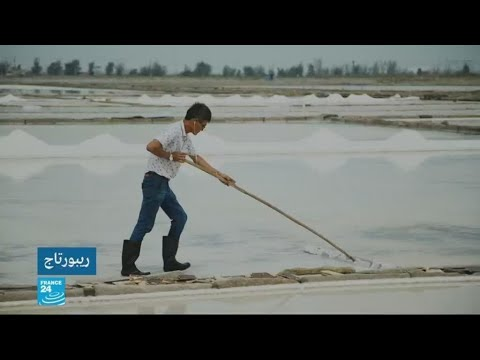 شاهد رواج تجارة الملح في الصين وكان ثمنه قديمًا أغلى من الذهب