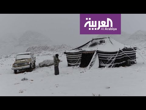 شاهد تساقط الثلوج على مناطق شمال السعودية