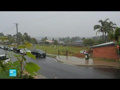 شاهد الأمطار بدأت في الهطول على حرائق الغابات في أستراليا