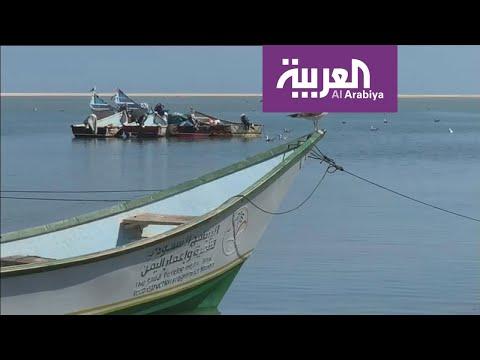 شاهد ماذا استفاد صيادو المهرة في اليمن من البرنامج السعودي لتنمية وإعمار اليمن