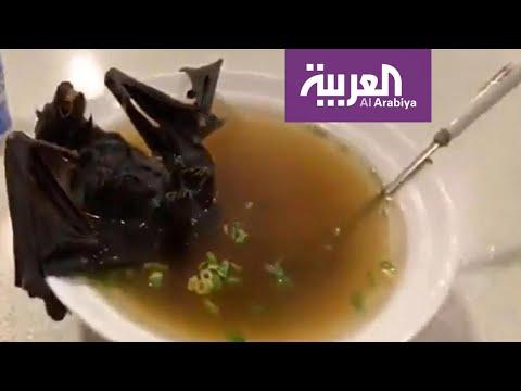 شاهد المطاعم في أندونيسيا تتحدى كورونا وتقدم أطباق من الخفافيش