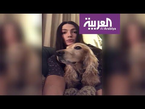 شاهد نجوم مصر يطلقون حملة دفاعا عن الحيوانات الأليفة ضد كورونا