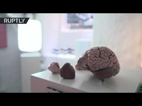 شاهد افتتاح متحف دولي لـالسعادة في العاصمة الدنماركية كوبنهاغن