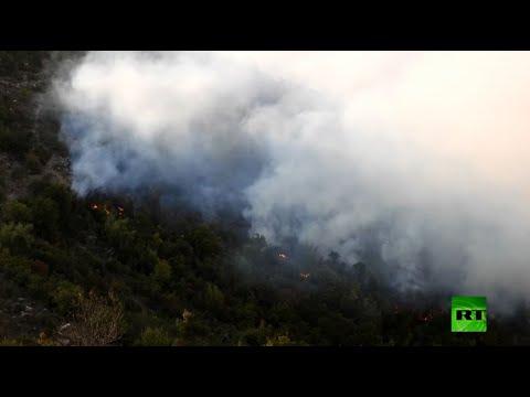 شاهد حرائق الغابات تجتاح شمال غرب سورية