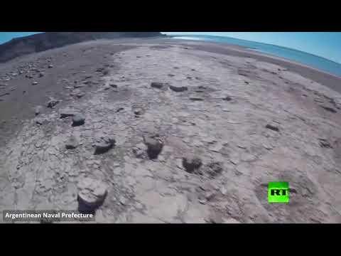 شاهد العثور على آثار ديناصور ذي قدمين في بحيرة الأرجنتين